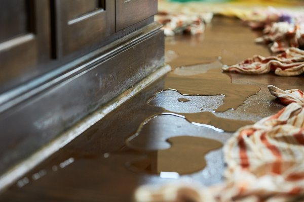 Water Removal Services In Greenville NC